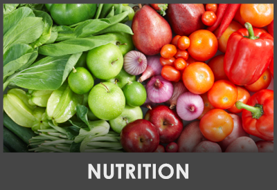 Chiropractic Athens PA Services Nutrition